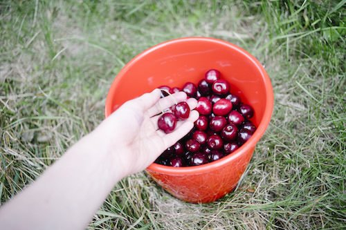 Caldero de fruta